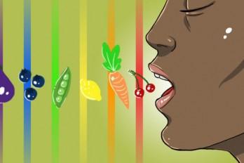 رژیم غذایی رنگین کمان