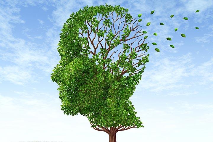 جلوگیری از پیری پوست و بدن,مغز