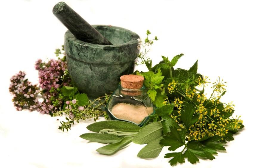 مصرف گیاهان دارویی بدون مشورت با پزشک توصیه نمی شود
