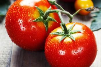 ۲۲ مادهی غذایی پرقدرت