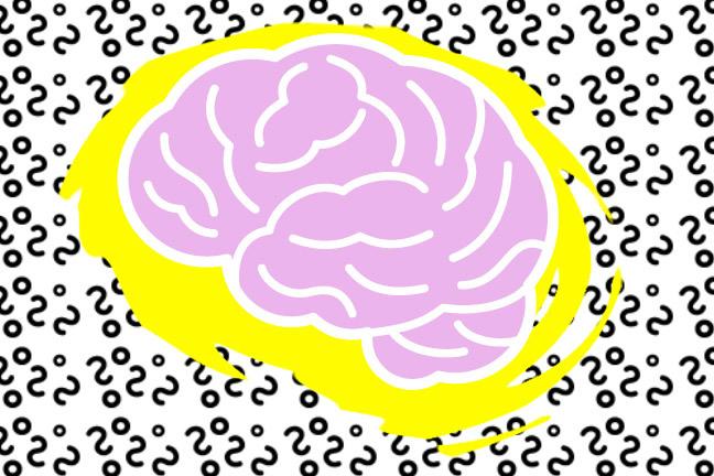 غذای مغز