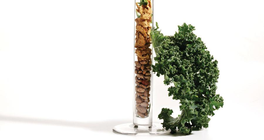رژیم گیاهخواری و تامین مقدار آهن لازم برای بدن