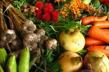 چگونه بدون حذف کامل گوشت از خواص گیاه خواری بهره ببریم؟
