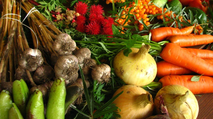 رژیم غذایی سالم بدون گوشت