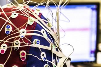 عملکرد امواج مغزی در فرایند یادگیری
