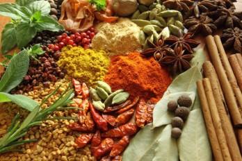 ۶ گیاه دارویی برای درمان آنفولانزا و سرماخوردگی
