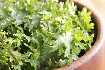 لیست غذاهای مغذی، مقوی و مفید برای زیبایی