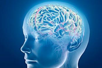 علایم هشدار دهنده سکته قلبی و مغزی