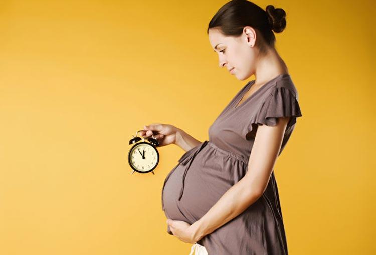 راهنمای بارداری