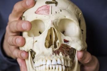 متخصص آسیب شناسی کیست و چه مهارت هایی دارد؟