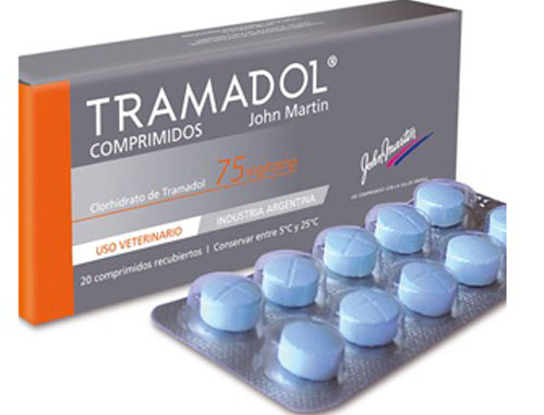 ترامادل