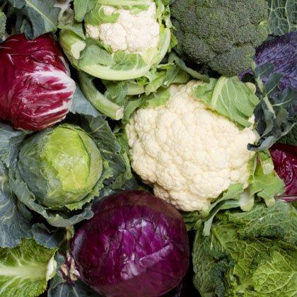 کلم-cabbage