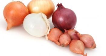 پیاز onions