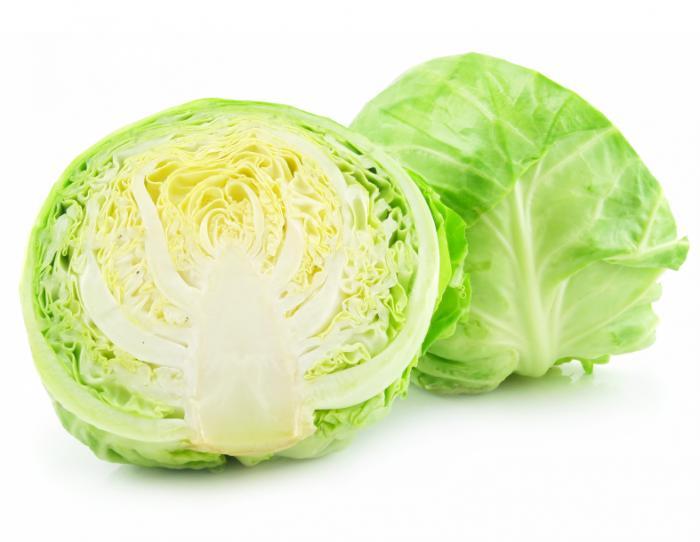 برگ کلم cabbage
