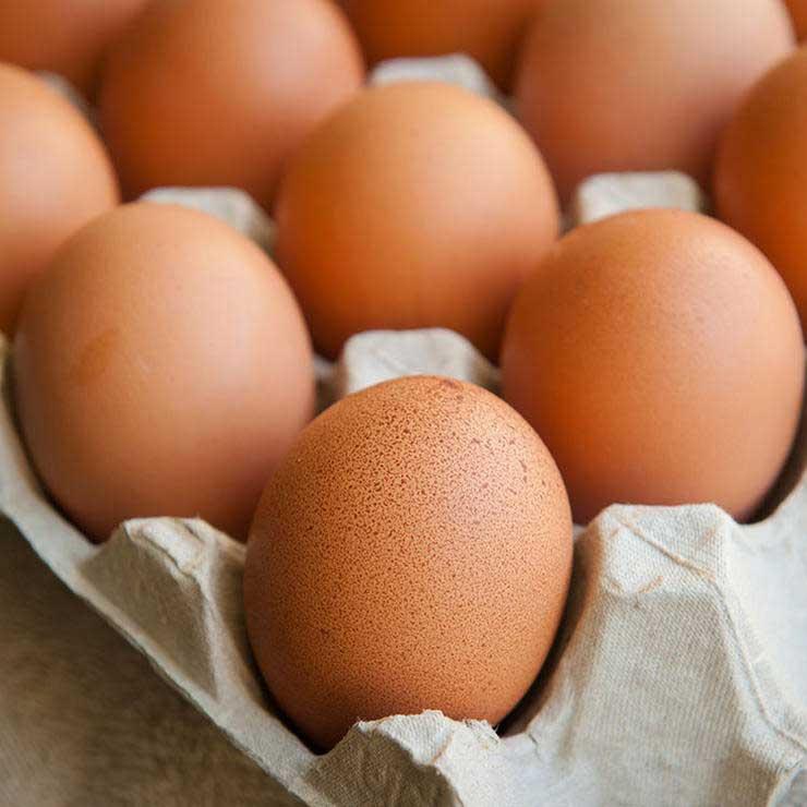 برای رفع گرسنگی چه بخوریم,سیر شدن,تخم مرغ