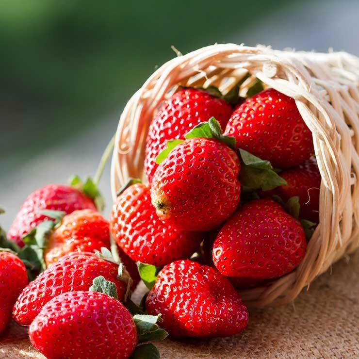 منبع غذایی ویتامین c,توت فرنگی