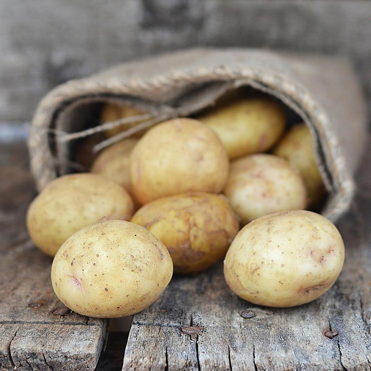 برای درمان آفتاب سوختگی چه بخوریم,potatoes-سیب زمینی