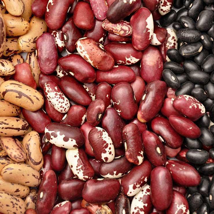 غذاهای ضد سرطان,برای پیشگیری از سرطان چه بخوریم,حبوبات