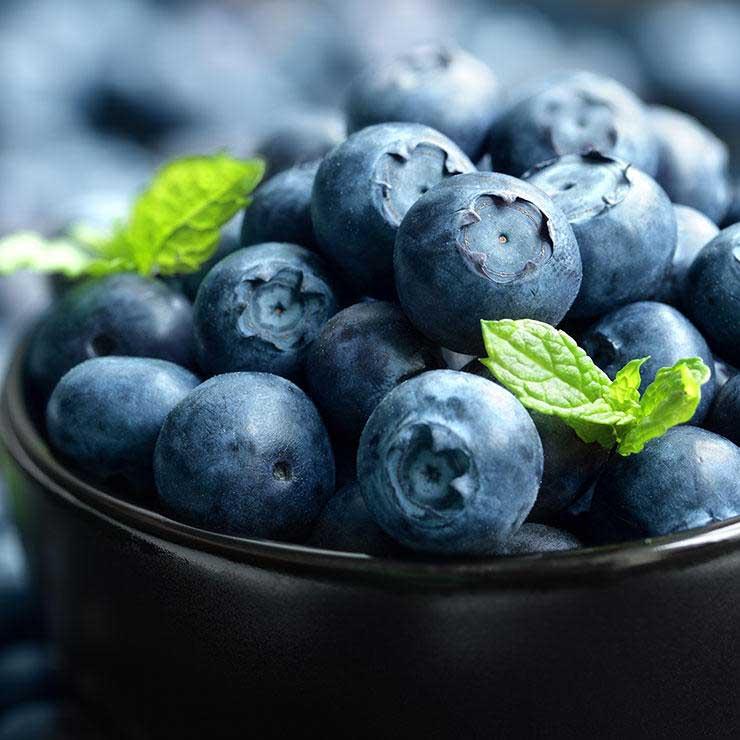 غذاهای ضد سرطان,برای پیشگیری از سرطان چه بخوریم,بلوبری