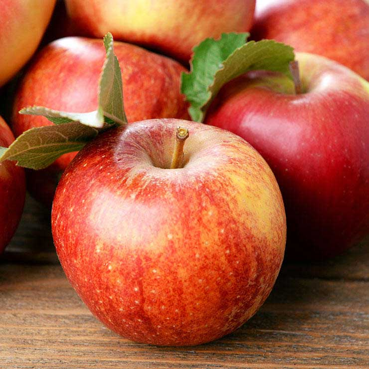 غذاهای ضد سرطان,برای پیشگیری از سرطان چه بخوریم,سیب