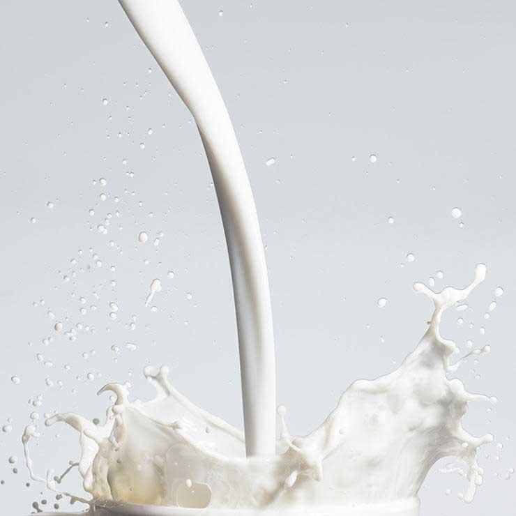 غذاهای ضد سرطان,برای پیشگیری از سرطان چه بخوریم,شیر