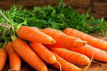 غذاهای ضد سرطان کدامند؟