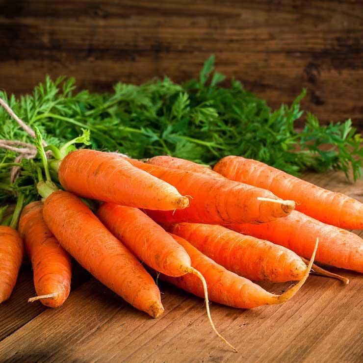 غذاهای ضد سرطان,برای پیشگیری از سرطان چه بخوریم,هویج