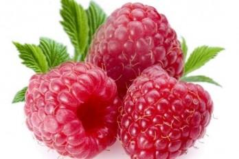 تمشک Raspberry
