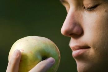 بوکردن سیب Smell-apple