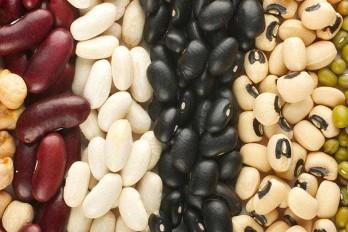 انواع مواد غذایی ارزان قیمت و سالم