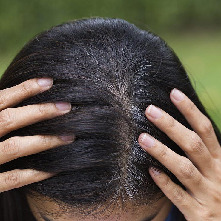رنگ موهای طبیعی گیاهی,پنهان کردن رنگ خاکستری مو