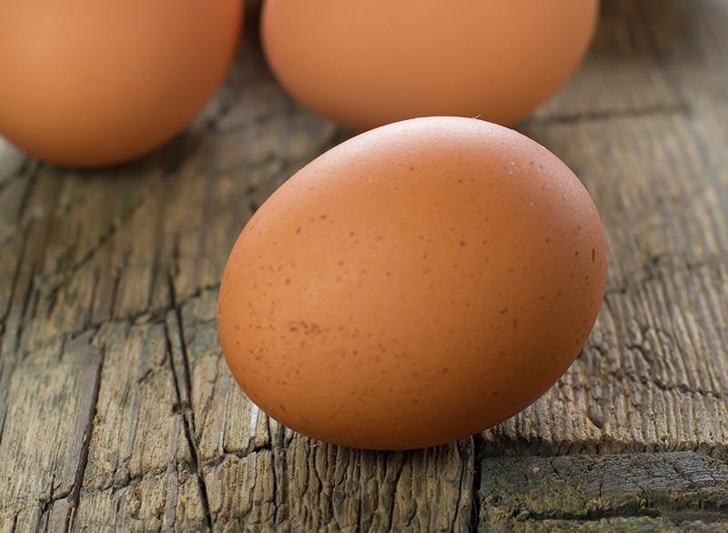 تغذیه ورزشکاران سرعتی,تخم مرغ