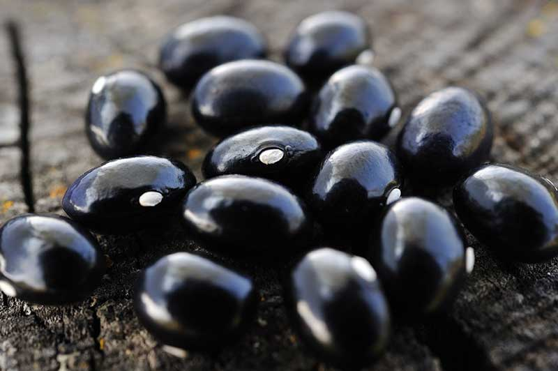 black-beans-background-10-daily-habits-blast-belly-fat لوبیای سیاه