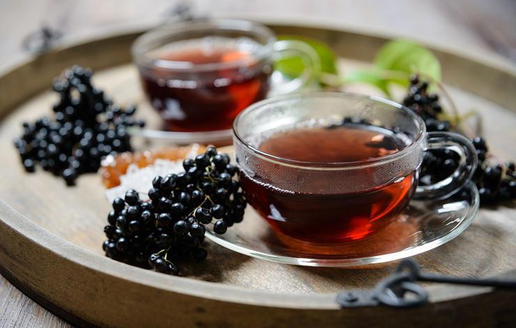 داروی گیاهی درمان سرماخوردگی,elderberry-آقطی کانادایی