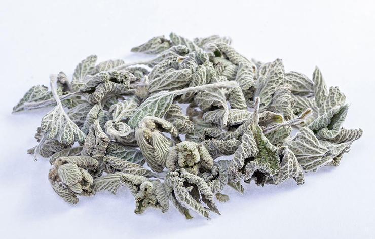 داروی گیاهی درمان سرماخوردگی,horehound-گندنای کوهی