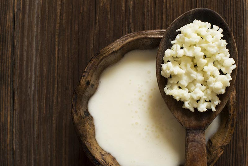kefir-superfoods کفیر