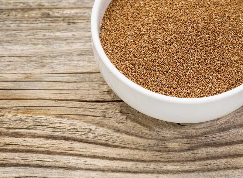 رژیم کربوهیدرات برای لاغری,teff-meat-free-proteins