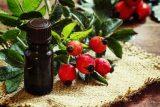 faceoil-rosehip-روغن گل رز