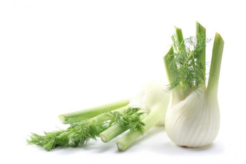 خواص رازیانه,رازیانه fennel