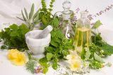 گیاهان دارویی افزایش رشد مو