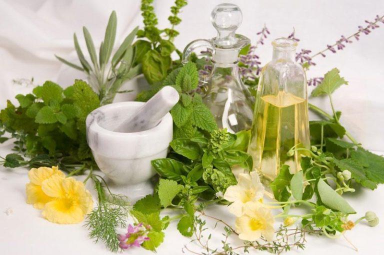 گیاهان دارویی برای رشد موی سر