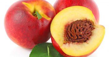 خواص شلیل nectarines