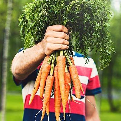 غذاهای مفید برای چشم,هویج