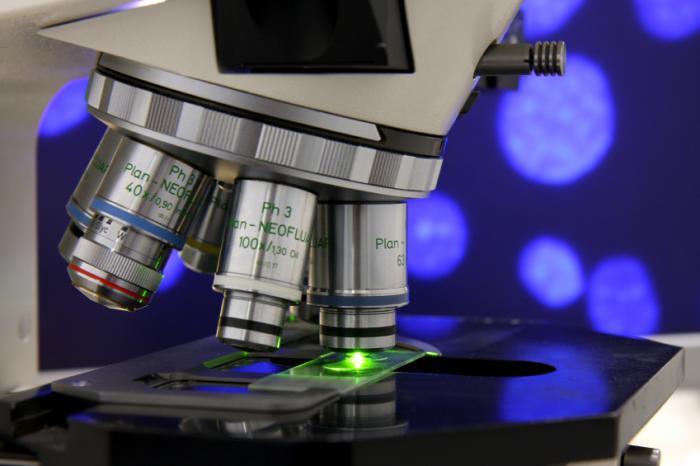تست تشخیص اسهال microscope