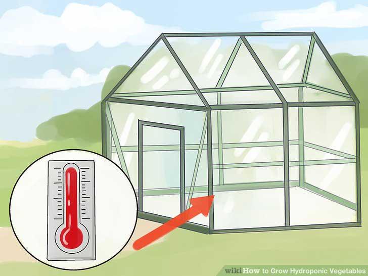 دمای گلخانه هیدروپونیک