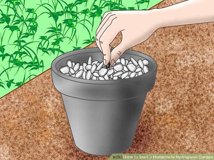 aid2660539 v4 728px Start a Homemade Hydroponic Garden Step 5 چگونه یک باغ هیدروپونیک خانگی راه اندازی کنیم؟ سلامت