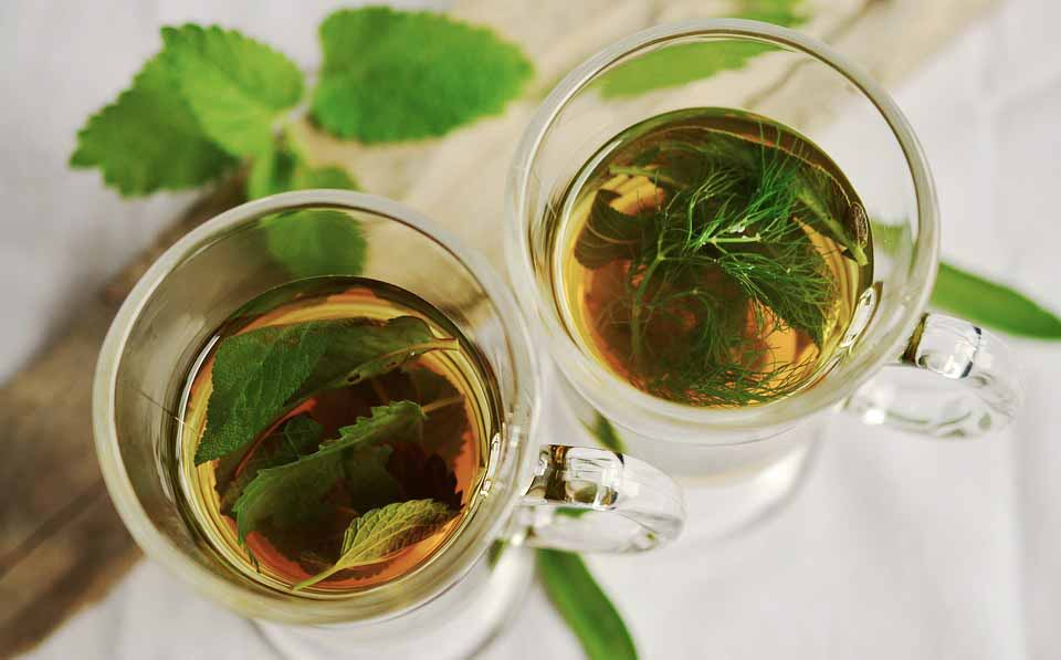 چای گیاهی مریم گلی