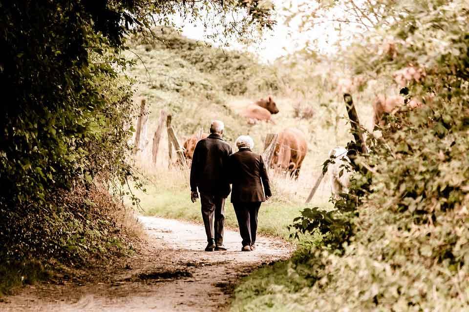 روابط دوستانه و اجتماعی در دوران سالخوردگی