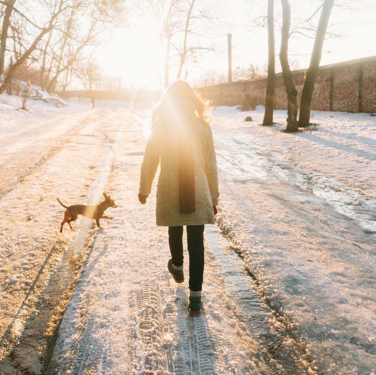 پیاده روی در فصل زمستان