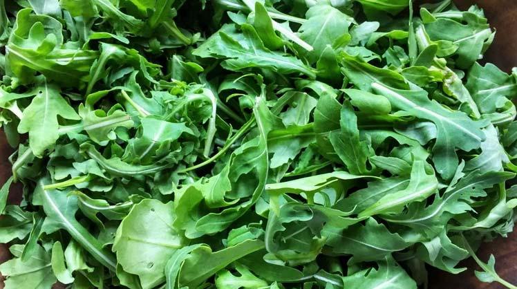 خواص سبزی آروگولا